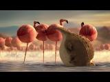 ОЧЕНЬ смешной мультик ))) ROLLIN' SAFARI - 'Flamingos' 2013